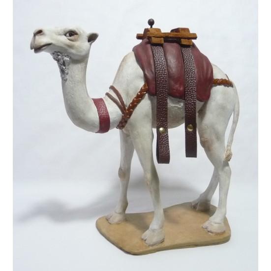 Camello con correas blanco Nª 9