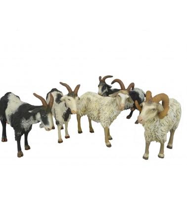 Cabras surtidas para 19 cm.  ( caja 6 unidades )